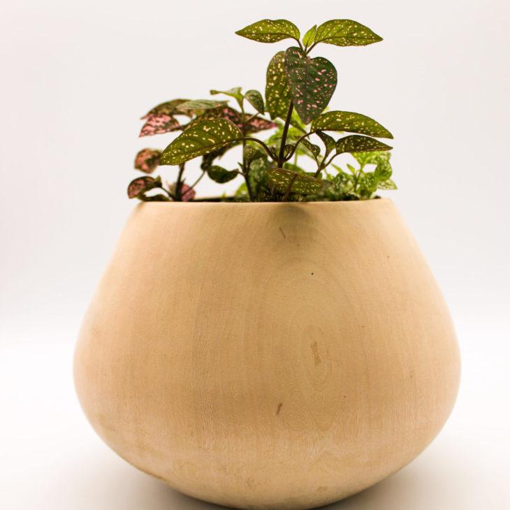 wood plant holder
