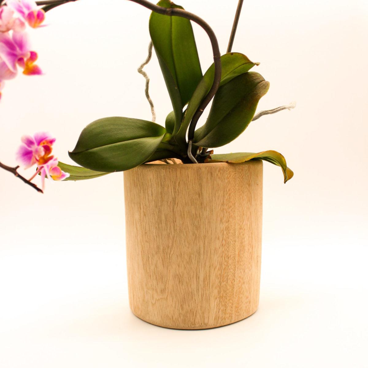 plant holder wooden emma
