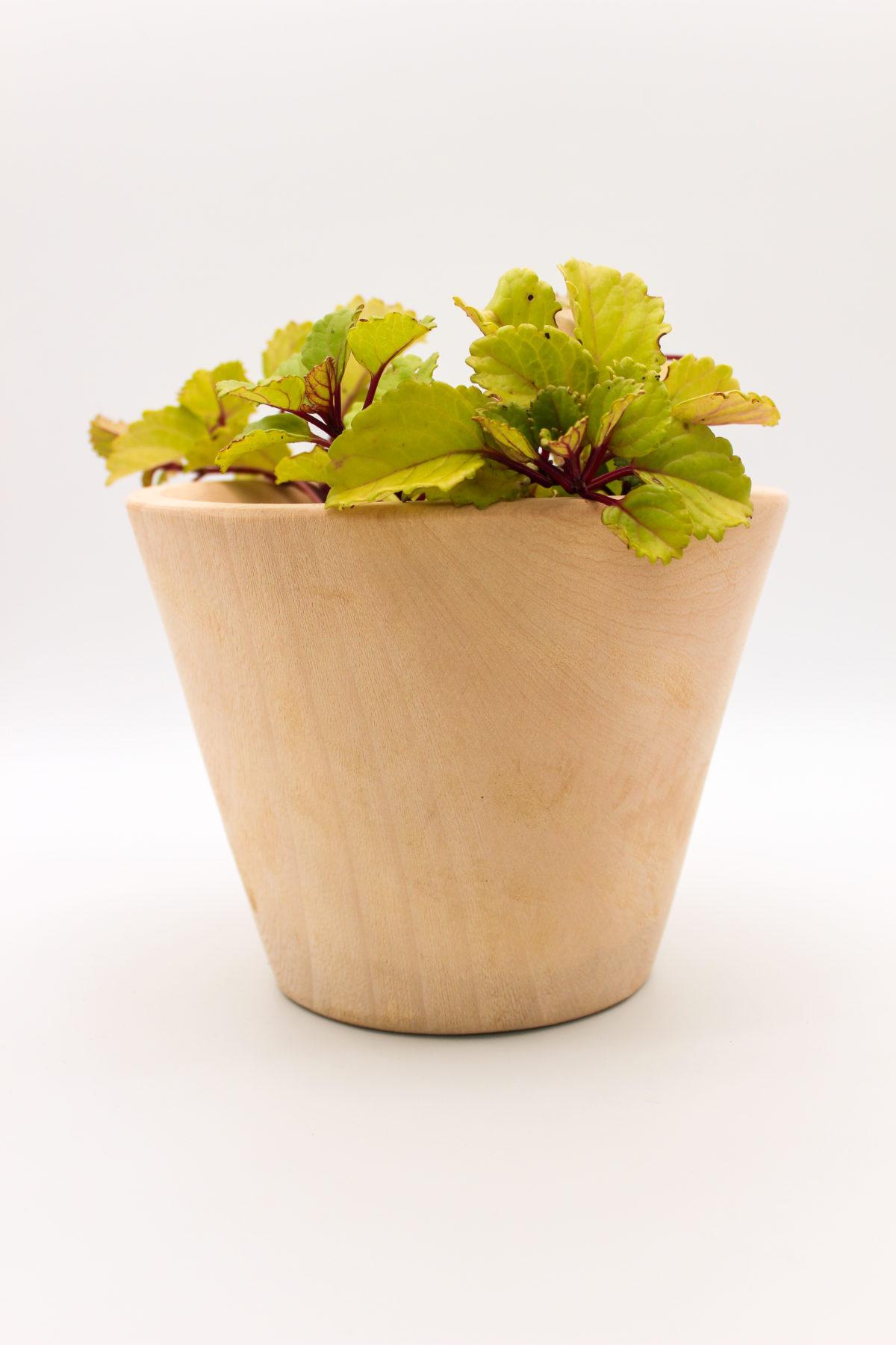 wood pot plant holder